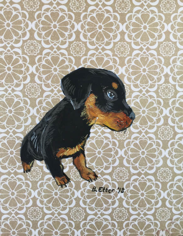 Rottweiler pup drawing