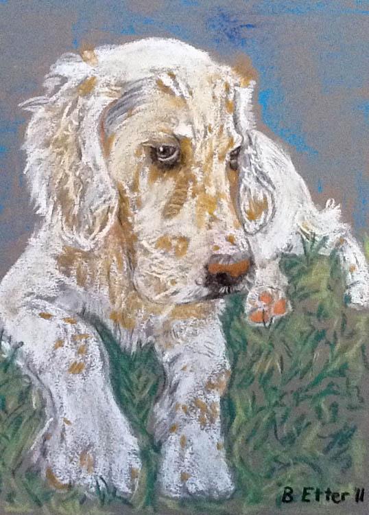 Tochka the dog portrait