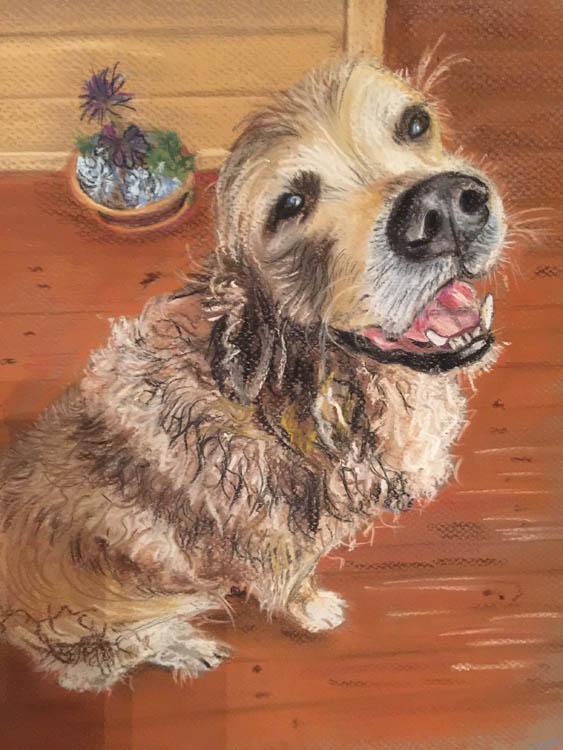 Dirty Dog Portrait