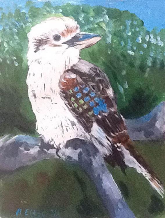 kookaburra drawing
